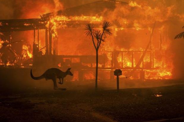 WASSers chung tay cầu nguyện cho nước Úc